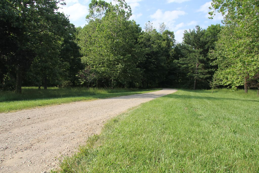 Entrance - 1000 foot driveway into the woods