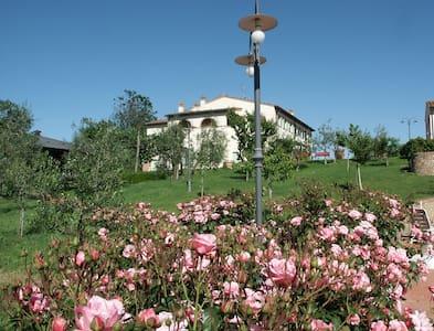 Room overlooking Tuscany hills - Aamiaismajoitus