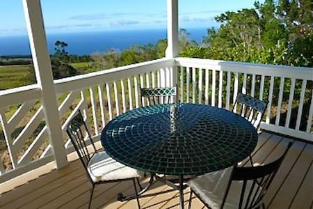 Panoramic Ocean View Estate - Laupāhoehoe - Casa