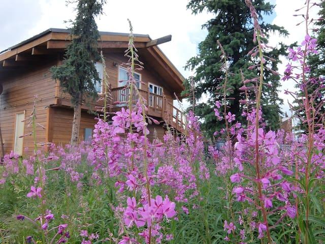 Denali Hygge Home: Close to Denali Park!