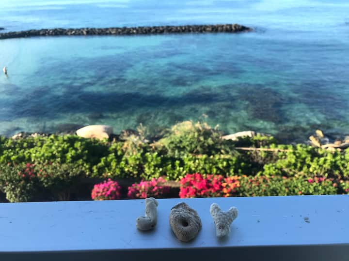 Oceanfront condo-Dolphins, Turtles, Sunsets oh my!