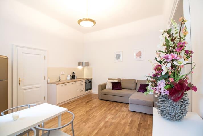 Nadherný apartmán v centru Prahy - MM