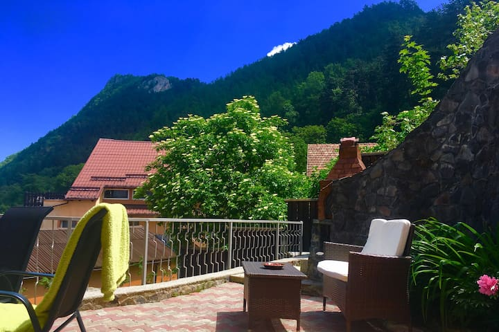 The View House Brasov