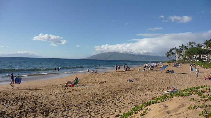 Maui Condo across fm Kam II beach