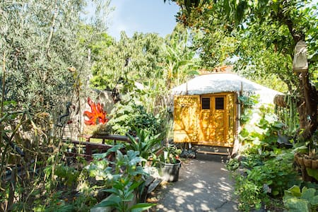 Yurt in the City-Fitzroy Melbourne