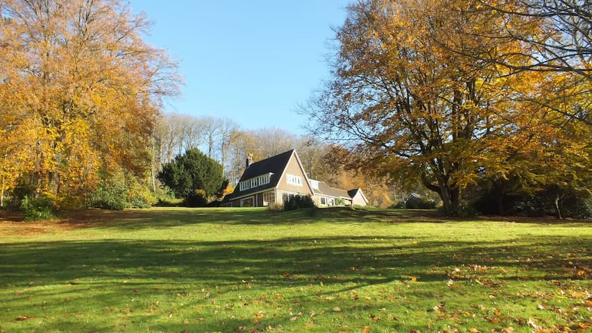 Tilling Springs House - Abinger Common