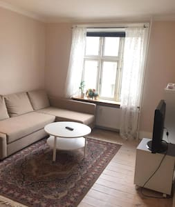 Central cosy and clean apartment in hip Vesterbro - 哥本哈根 - 公寓