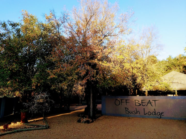 Self-catering lodge in the heart of the Bushveld