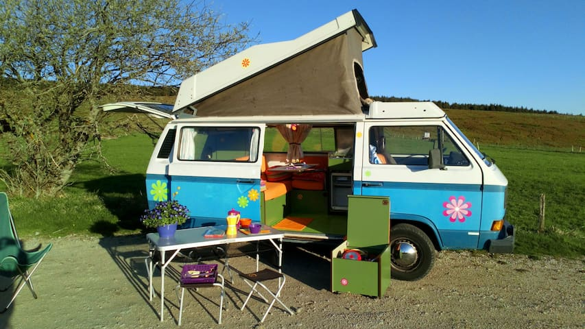 Location de combi Volkswagen Westfalia