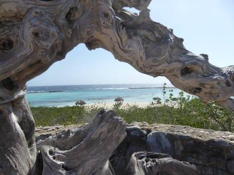 Baby Beach House Aruba