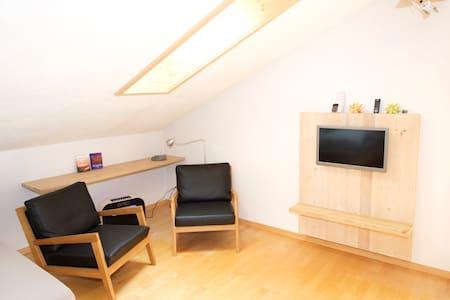 Terra Berni 2-Zimmer Dachwohnung 4P - Vals - Apartment