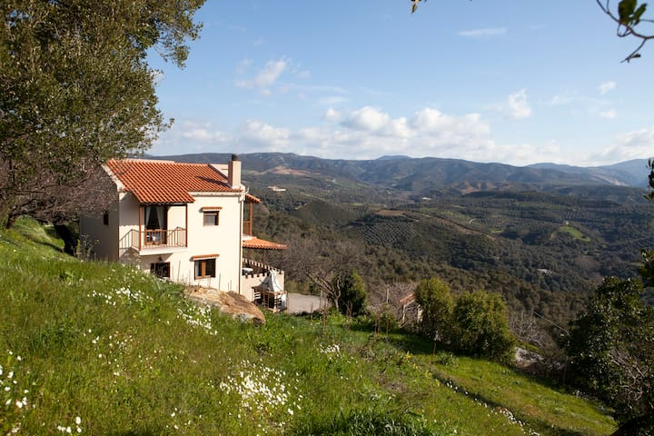 AORI hillside villa - Κοπετοί / Παλαιόχωρα - Villa