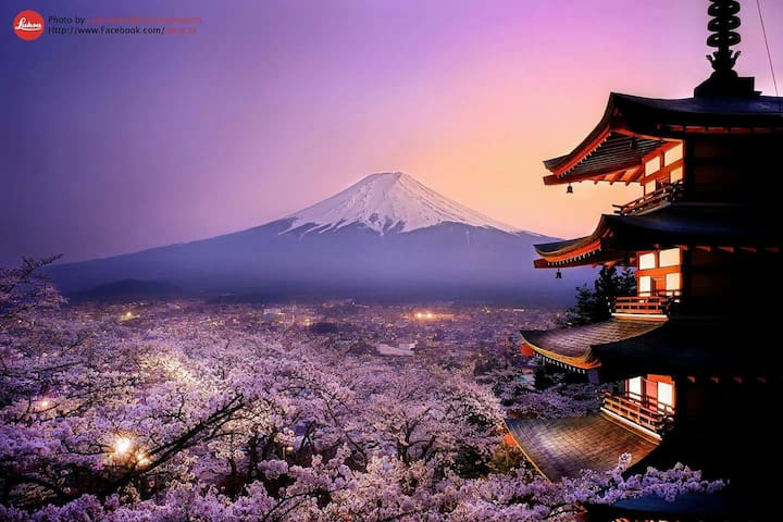 MtFuji cherryblossoms private villa - 南都留郡 - House