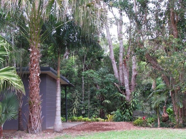 GORGEOUS CABIN ON THE LAKE among trees & wildlife. - Yungaburra - Cabaña