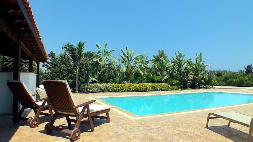 Modern luxurious garden villa - Larnaca - Villa