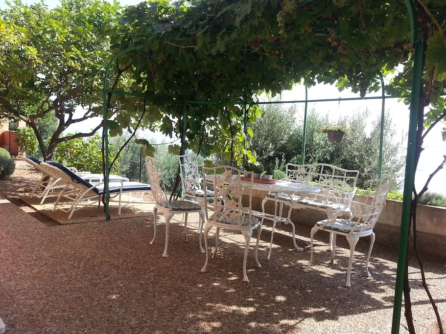 Terrasse et jardinet privatifs