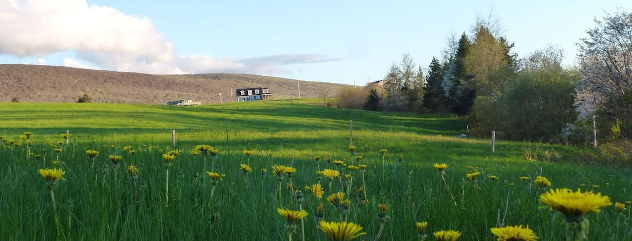 Cape Breton Paradise - Cottages for Rent in Margaree Forks ...