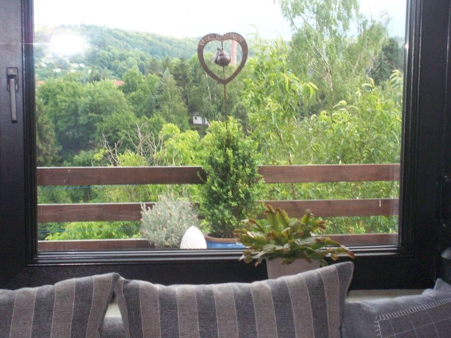 Blick aus dem Wohnzimmer ins Grüne