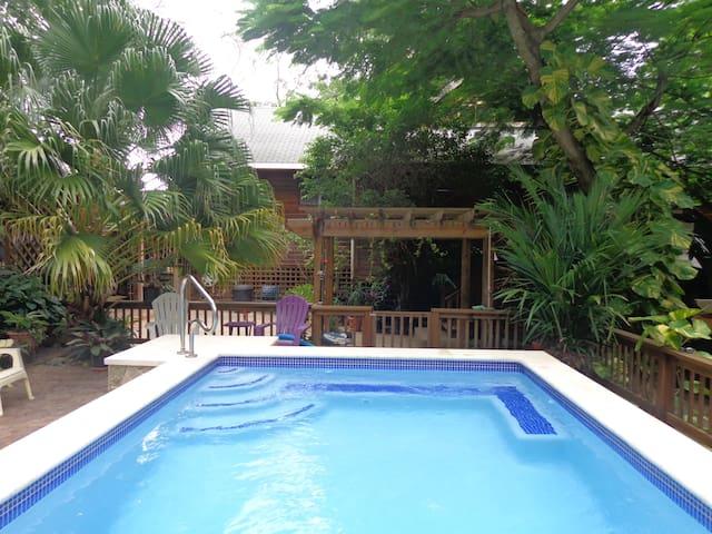 Sandy Bay Guest suite Iguana Falling