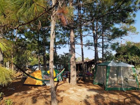 Camping en Finca Carpintero