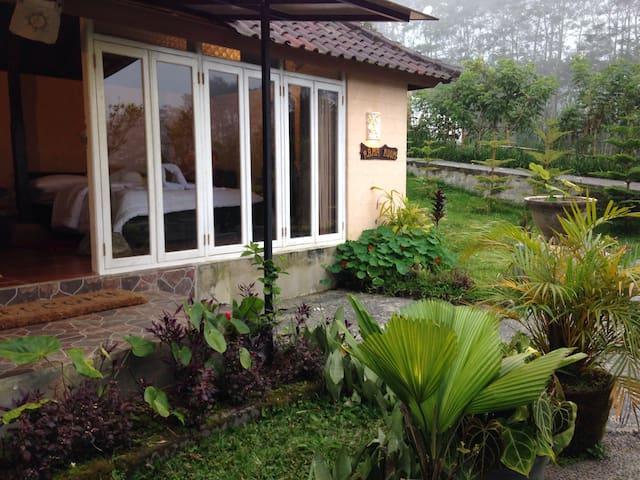 Telaga Sari Villa ( Rama room) - Tabanan  - Villa