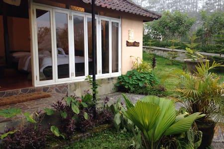 Telaga Sari Villa ( Rama room) - Tabanan