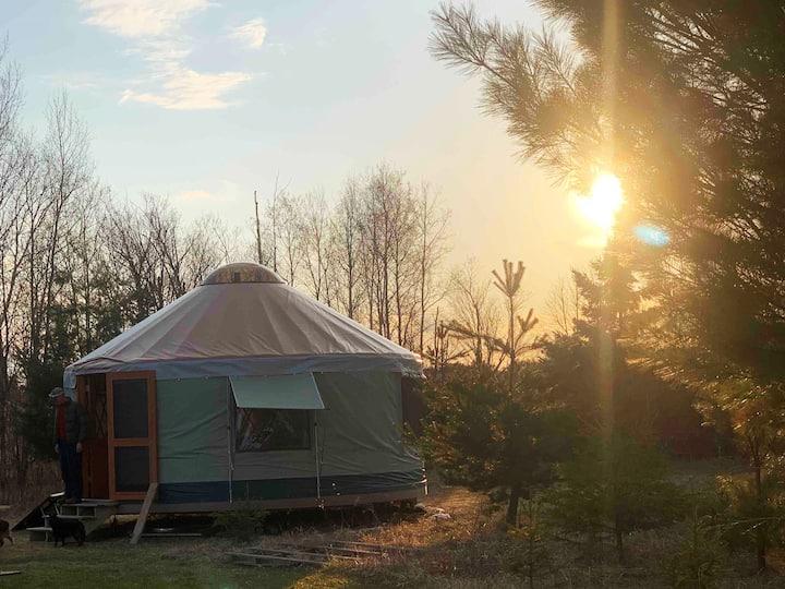 """Hemlock yurt"" (near Duluth, MN)"