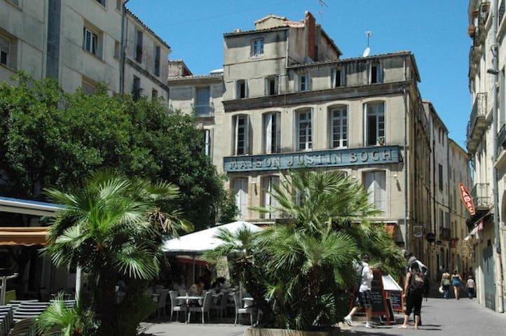 T2 avec clim, centre ville de Montpellier Écusson