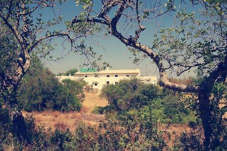 Casa algarvia campestre e luminosa - Algoz - Casa