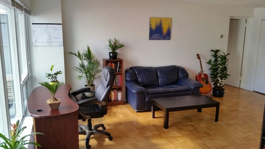 Perfect location: Central, Spacious and Sunny 1BR - Оттава - Квартира