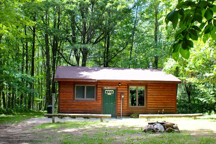 Log Cabin in the Manistee Forest
