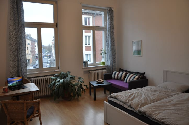 "Spacious ""Altbau"" flat in the midst of Aachen"