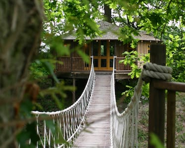 Bensfield Treehouse - Poynings