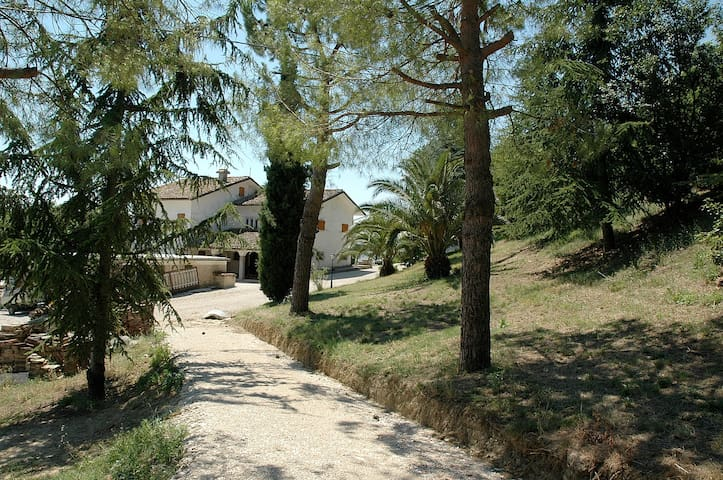 Agriturismo Le Palme - Servigliano - Rumah