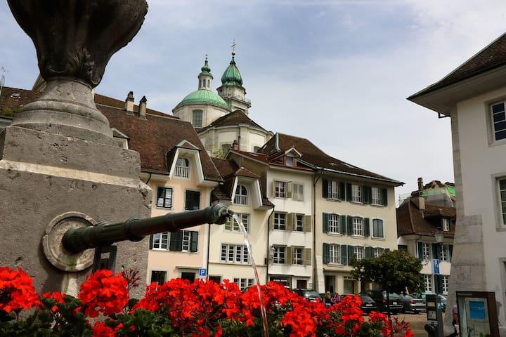 Antiker Charme, moderner Komfort - Solothurn - Apartament