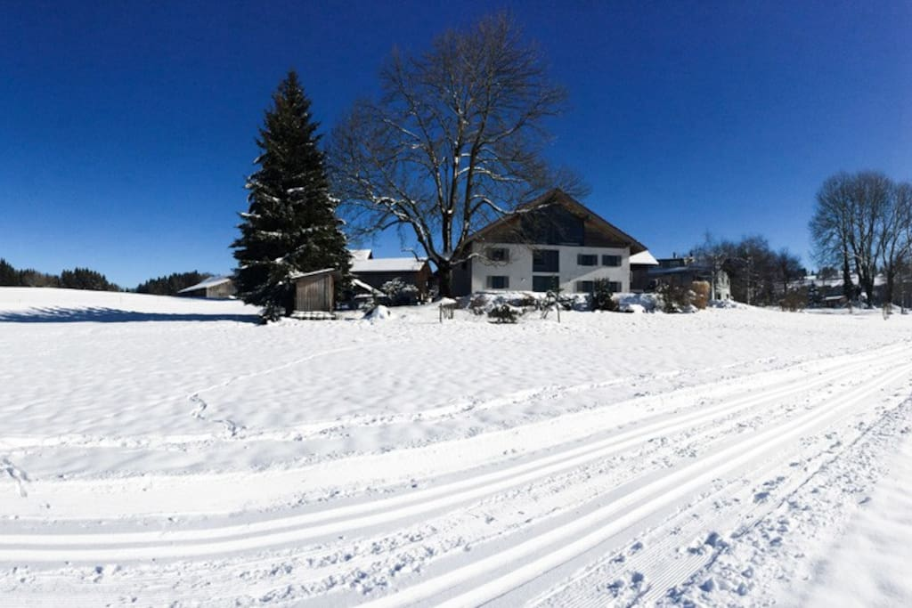 Langlaufloipe // cross country skiing