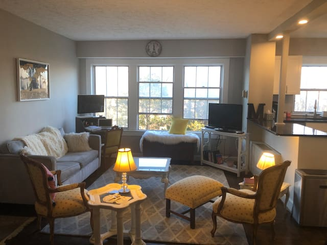 Light filled one bedroom in Cathedral Heights