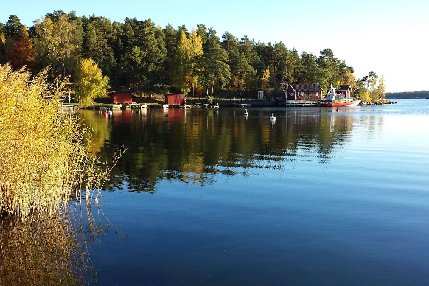 Beautiful Källviken in  summertime, 200 meters from the house. However no sea view from our house