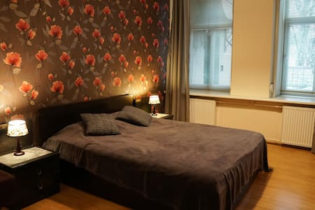 Cozy two rooms apartment in Vilnius Oldtown
