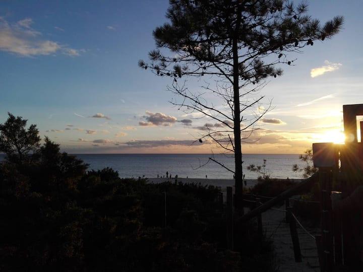 Eco-resort villa in Tróia beach