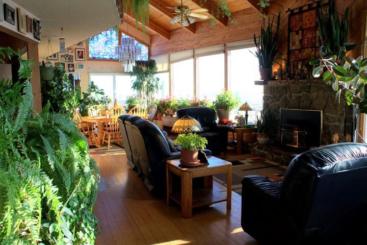 3br - Sunny 3 bedroom house - Livingston