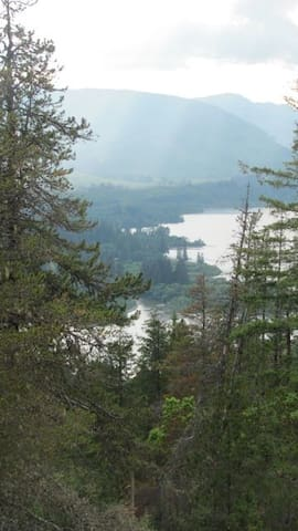 Old Growth Wilderness GuestSuite - Lake Cowichan - Casa