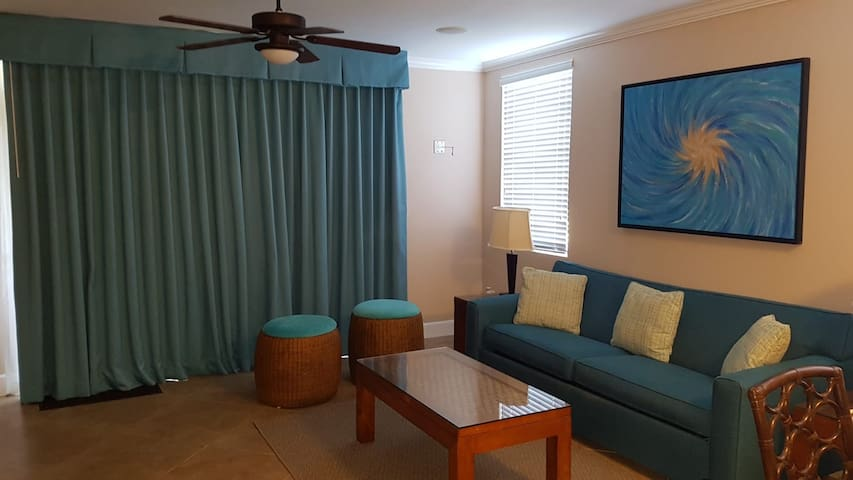 Living Room With Queen Size Pull Out Bed