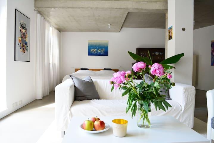 Modernes Loft, Troisdorf Bestlage