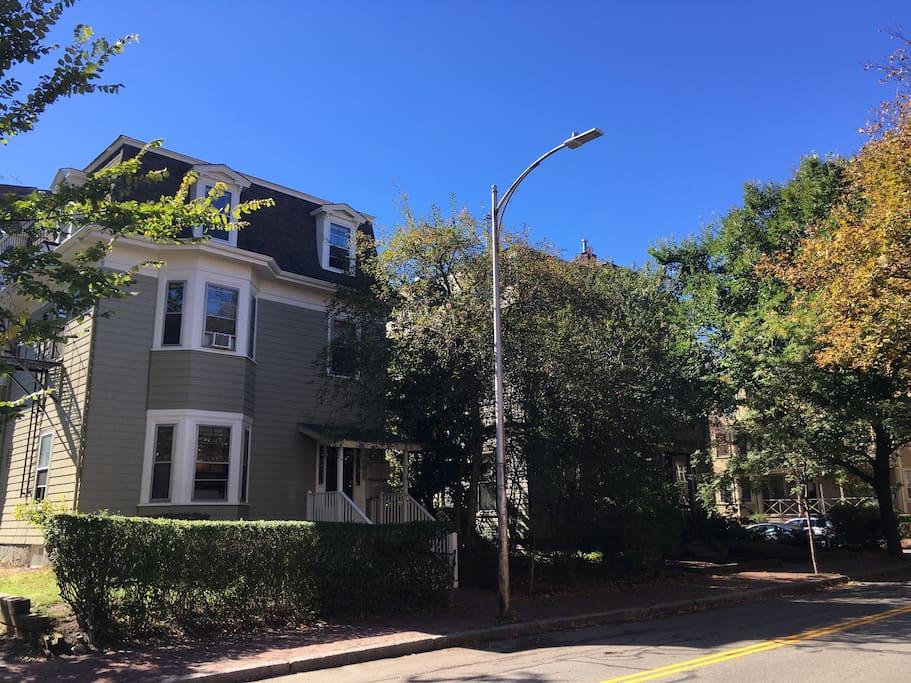 Harvard Street. nice and cosy neighborhood