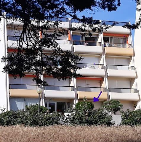 Emplacement du studio en Rez-de-Jardin dans l'immeuble Voilier II