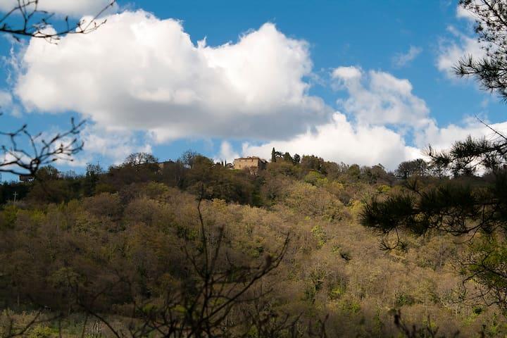 villa Emiliano - Arezzo - Haus