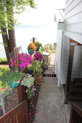 YOUR WALK WAY TOWARDS THE DECK FROM UPPER PARKING AND THE PRIVATE STUDIO
