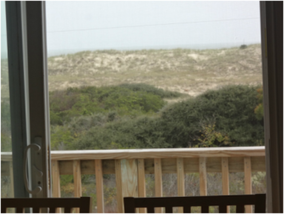 Secluded Dune View