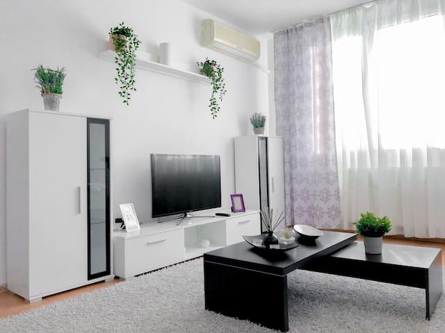 Cozy Colorful Apartment-Plaza Mall *Free Netflix*